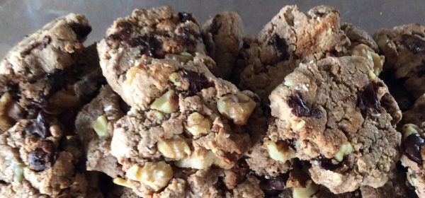 Paleo Coconut Dark Chocolate Chip Cookies